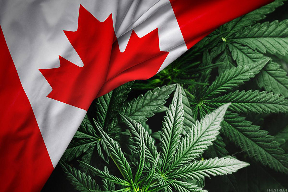 Top 5 Canadian Cannabis Licensed Producers