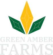 green amber farms logo