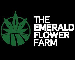 the emerald flower farm logo