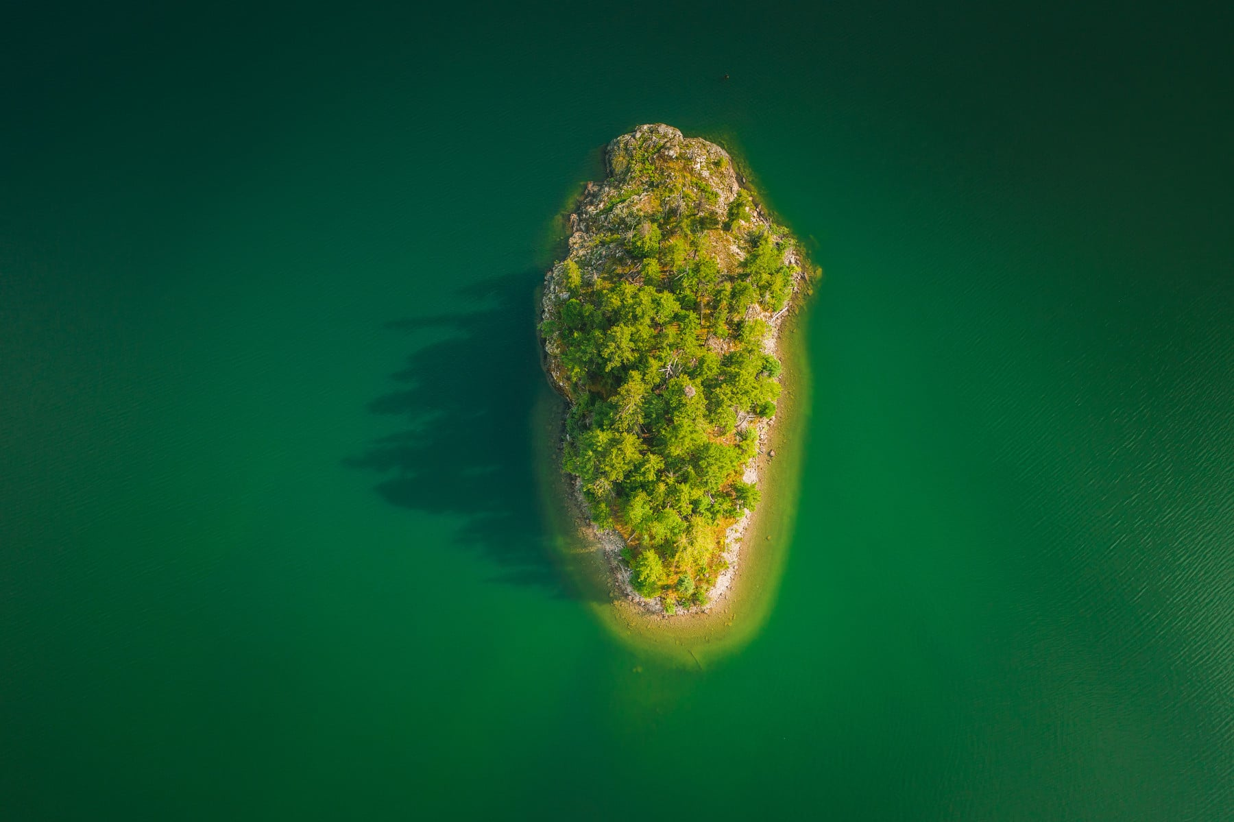Aerial shot of small island covered in trees surrounded by green water