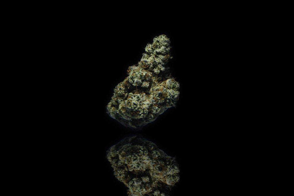dried cannabis nug standing up on black background