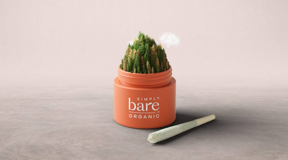 simply-bare-orange-jar-with-miniature-forest-emerging-from-the-top-with-a-tiny-rain-cloud-and-a-pre-roll-joint-next-to-the-jar-on-a-cloudy-background